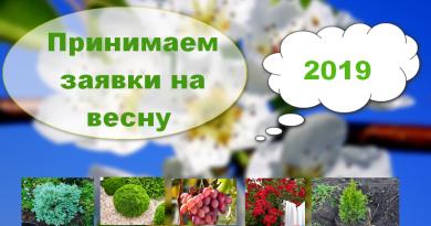 Питомник растений в Подгорье (Могилевский район) принимает заявки на весну 2019
